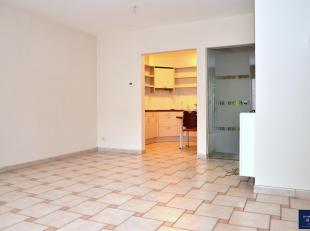 Dit appartement is rustig gelegen doch in het centrum van Genk. Het appartement ligt op het eerste verdiep (toegankelijk via de lift) en bestaat uit e