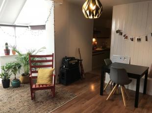 Dit appartement is praktisch gelegen langs de Bretheistraat vlakbij het centrum van Genk en vlak naast de supermarkt Lidl aan de Weg naar As. Verder l