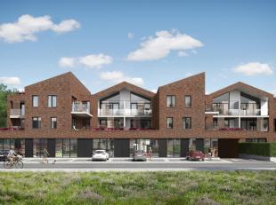 Maak kennis met Koeveld: een nieuw woonproject van 8.332 m² op de voormalige slachthuissite in Diest. Langs de Oude Baan, in een groene woonwijk