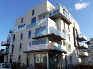 Op een unieke toplocatie, op enkele passen van het gemeentehuis en op een boogscheut van de zeedijk en het strand, ontwikkelt Willemen Real Estate nie