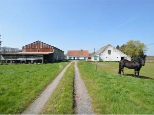 Deze 18de -eeuwse hoeve is gelegen op 6.138 m² grond. Aanpalend vinden we diverse percelen landbouwgrond, samen goed voor 2 Ha, 74 A en 80 Ca (27