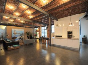 Prachtige, ruime, hedendaagse loft gelegen in een rustige en residentiële omgeving waar het aangenaam wonen is. Deze stijlvolle loft triplex is g
