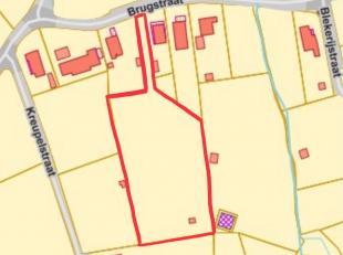 Terrain à vendre                     à 1703 Schepdaal