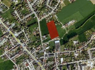 Een perceel weiland, ± 01 hectare 22 are 72 ca groot. ongeveer 165m breed. Gelegen in agrarisch gebied.Verpacht. Prijs steeds exclusief eventue
