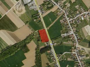 Een perceel weiland, ± 76 are groot (± 120m breed langsheen de Dendermondsesteenweg). Vrij van gebruik !