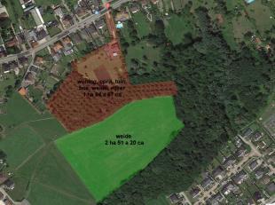 VALIMMAS verkoop dit perceel weiland, ± 2 hectare 51 are 20 ca groot. Verpacht. Prijs steeds exclusief eventuele uittredingsvergoeding en prijz