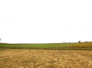VALIMMAS verkoopt dit perceel akkerland, ± 1,4 hectare groot, in de omgeving van 'Kartelobos', relatief makklijk bereikbaar via een aarden baan