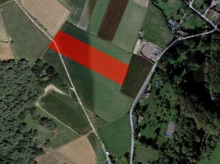 VALIMMAS verkoopt dit welgelegen perceel akkerland, met een oppervlakte van ± 79 are 83 ca (± 44m x 180m), in een landelijke kouter (opg