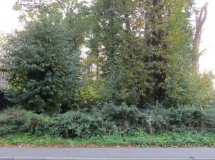 Immo Alphabitat vend ce terrain à bâtir pou une villa 4-façades à Rixensart. Largeur du terrain = 26 m; Profondeur = 45,46