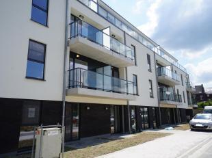 Optie    -    Nieuwbouwappartement gelegen aan Elisapark. Nieuw geschilderd en vliegenramen voorzien. Gebouw met lift. Privékelder en staanplaa