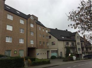 Ruim appartement gelegen in de Leeuwerikenstraat te Heverlee, op een boogscheut van Leuven centrum.<br /> Met maar liefst 151m² en 4 slaapkamers,