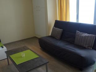 Centraal gelegen studio op de 3de verdieping van Residentie Fernande in de winkelstraat van Nieuwpoort. <br /> Deze studio heeft een woonkamer waar sl