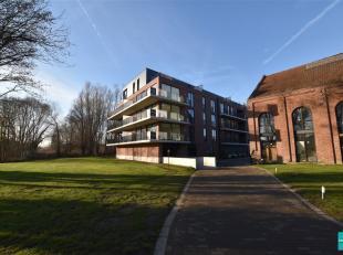 2 penthouses met 3 slaapkamers te koop in het project Witte Pauw. Deze penthouse bevindt zich op de vierde verdieping en bestaat uit een inkomhal, rui
