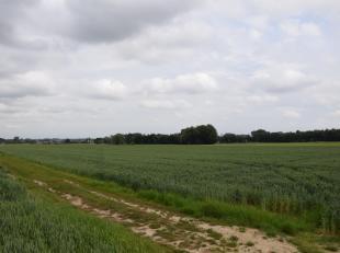 Een perceel landbouwgrond van 23aren60 ca te koop te Humbeek. Momenteel verpacht.