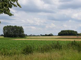 Un terrain agricole de30ares75ca à vendre à Wolvertem. Actuellement loué.