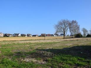Prachtige villagrond met een oppervlakte van 10a67ca, nabij het centrum van Meise in een rustige eenrichtingsstraat. Deze grond biedt u de mogelijkhei