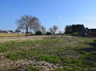 Prachtige villagrond met een oppervlakte van 19a32ca, nabij het centrum van Meise in een rustige eenrichtingsstraat. Deze grond biedt u de mogelijkhei