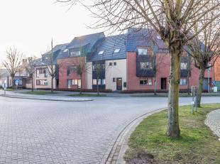 WINKSELE - Vijf ondergrondse autostaanplaatsen gelegen in het centrum van Winksele, vlakbij openbaar vervoer en uitstekende verbinding met Herent-Leuv