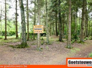 Rustig in groene omgeving gelegen bosgrond van 1508m². Geen bewoning toegestaan, ook niet bijvoorbeeld caravan/weekendchalet. Voor meer informati