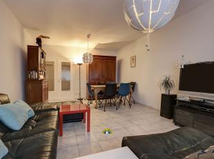 Zeer ruim charmant gelijkvloers appartement met 2 slaapkamers en grote koer/stadstuin (ca 24 m²) op het Antwerpse Zuid, in de schaduw van het Mus