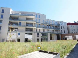 Penthouse van 118 m² met 59 m² zuidwest gericht dakterras aan het Theaterplein en Hopland ! Op amper 50 meter van het Theaterplein, vlakbij