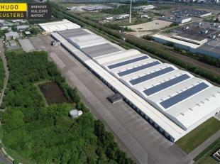 Logistieke opslaghallen gelegen in de IZ Genk-Zuid-Linkeroever. Het complex is zeer vlot bereikbaar via de autosnelweg E314 Brussel-Aachen (afrit 31 e
