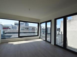Schitterend nieuwbouw appartement op wandelafstand van het Theaterplein en de Meir met prachtig dakterras.Op een rustige locatie in het centrum van An