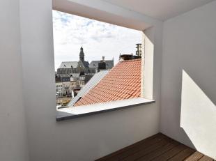 Gezellig appartement met een mooi terras op ideale locatie tussen het Eilandje en het Historische Stadscentrum.