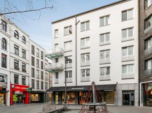 Royaal duplex appartement met veel lichtinval op toplocatie in het centrum van Antwerpen. Uniek aan dit appartement is het grote dakterras met breed z