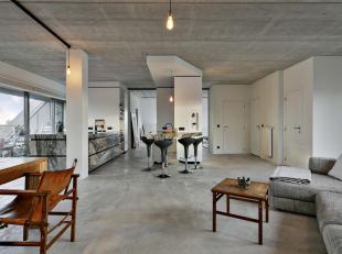 Schitterende penthouse met mooi terras en uitzicht.<br /> Momenteel opgedeeld in loft met ruim geïnstalleerde keuken met marmeren blad (cappucino