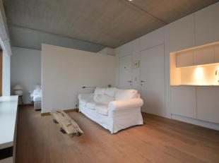 Charmante studio in het centrum van Antwerpen.<br /> Dit met smaak ingerichte studio beschikt over een keuken uitgerust met ijskast en kookplaat, een