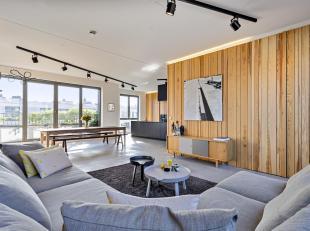 Unieke penthouse-loft met prachtige terrassen in een recent gebouw gelegen aan het bruisende Zuid op wandelafstand van de Gedempte Zuiderdokken en het