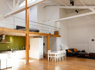 Unieke loft met hoge plafonds op wandelafstand van de Meir.
