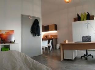 Studio in nieuwbouw voor studentenhuisvesting. Eigen badkamer, keukentje, toilet, wastafel en douche. Professioneel internet en WIFI aanwezig. Bemeube