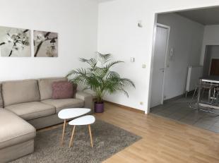 Appartement met 2 slaapkamers te huur in Antwerpen (+ deelgemeenten ...