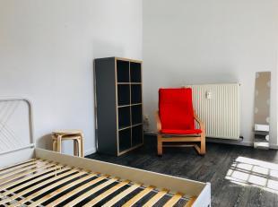 Gemeubelde studenten studio met eigen badkamer en keuken. Gelegen te midden van de Nationalestraat, op enkele minuten stappen van de Groenplaats. Makk