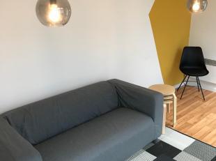 Gezellige gemeubelde studio met ingebouwde kasten dubbel bed, sofa, tafel en stoelen. Ingerichte keuken en badkamer. <br /> <br /> In het pand is een