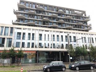 Schitterend en recent appartement met terras op het Eilandje in Residentie Cadiz.<br /> Indeling :<br /> Inkomhal:+/- 4m²<br /> Afzonderlijk toil