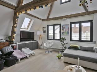 Totaal gerenoveerd LUXE appartement in 16de eeuws geklasseerd gebouw met 2 slaapkamers, gelegen tussen het Antwerpse Zuid en het Sint-Andrieskwartier.