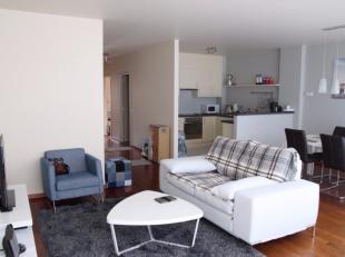Zeer comfortabel gemeubeld 2 slaapkamer appartement met terras en ondergrondse autostaanplaats in hartje Antwerpen Zuid, op 1min wandelafstand van het