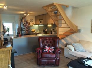 Gemeubeld duplex appartement met 1 slaapkamer op Antwerpen Zuid. Het appartement is gelegen op de 5de verdieping en bestaat uit een woonkamer met open