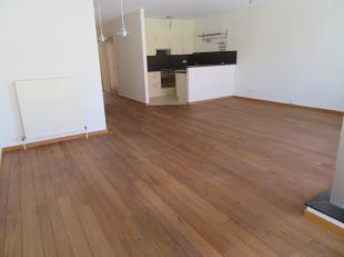 Zeer aangenaam 2 slaapkamer appartement (ca 95m²) met terras en parking in hartje Antwerpen Zuid in de befaamde Museumstraat naast de bekende Del