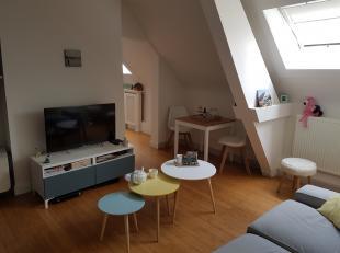 Heel licht, gezellig dakappartement van +/-  50m²  gelegen op 4de verdieping van zeer mooi hoekgebouw dat deels bestaat uit gerenoveerde appartem