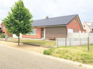 Maison à vendre                     à 2280 Grobbendonk