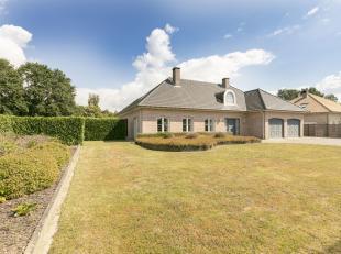 Ruime instapklare villa met zwembad te Westerlo.<br /> Zeer rustig doch zeer centraal gelegen met vlotte verbindingen naar omliggende gemeenten.Deze g