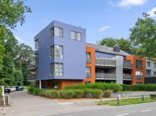 Energiezuinig 2 slpk. gelijkvloersappartement, aangenaam zuidgericht terras. Mooi, groen en rustig gelegen in een rustige residentie, De Kastelse Berg