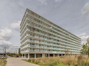 Leuk recent éénslaapkamer-appartement te Borgerhout.Pluspunten in de kijker :- EPC:  72,92 Kwh/m- Terras 12m²- Recent gebouw met la