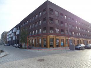 Porpriété commerciale (rez de chaussée)<br /> Lieu: spacieuse propriété commerciale de 226 m², situé au