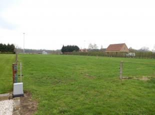 Bouwgrond van 19a03ca<br /> Ligging: Net gelegen nabij het centrum van Wechelderzande. Vlotte en goede verbinding E34.<br /> Bouwgrond voor open bebou