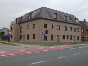 Appartement à louer                     à 2960 Brecht